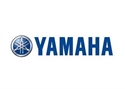 Picture for category YAMAHA-AIR FILTER  ELEMENT