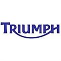 Picture for category TRIUMPH GENERATORS